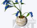 flora04