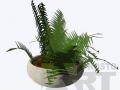 flora18